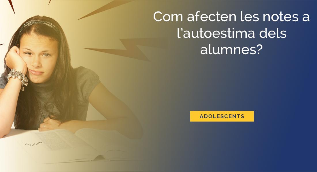 com-afecten-notes-autoestima-alumnes-suspendre-fracas-escolar