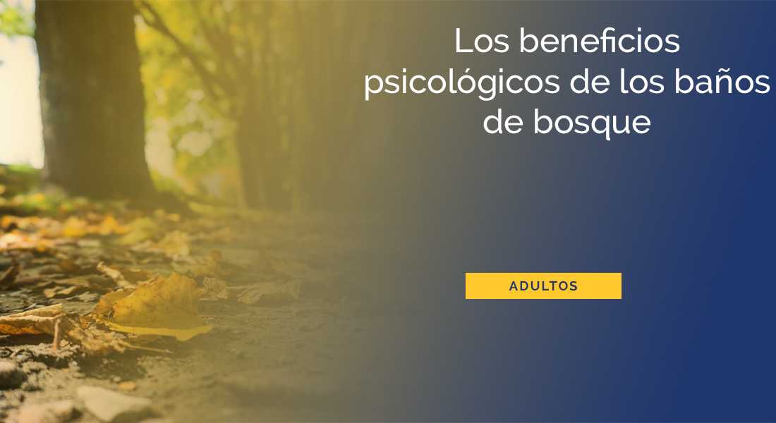 beneficios-banos-de-bosque